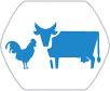 industrie viande et volaille