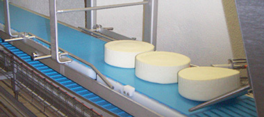 bande transporteuse fromagerie